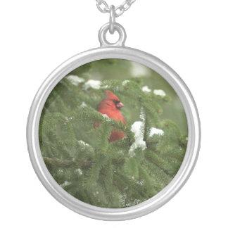 Collar del cardenal Nevado