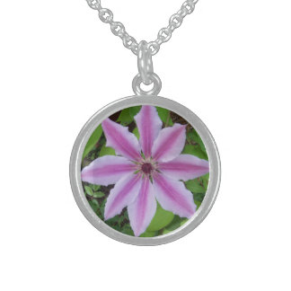 Collar del Clematis de la flor