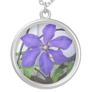 Collar del Clematis púrpura