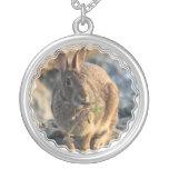 Collar del conejo