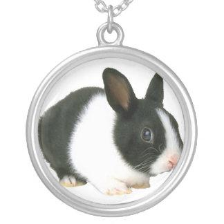 Collar del conejo de conejito