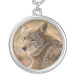 Collar del coyote