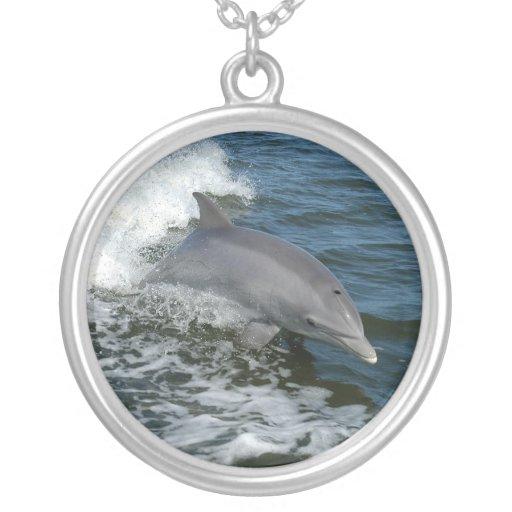Collar del delfín