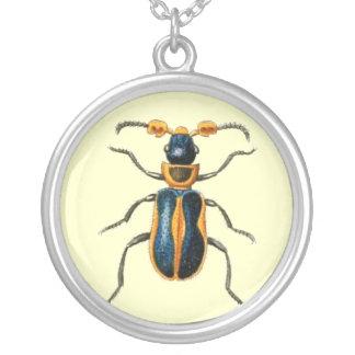 Collar del ejemplo del escarabajo