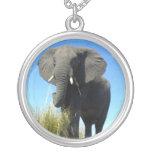 Collar del elefante africano