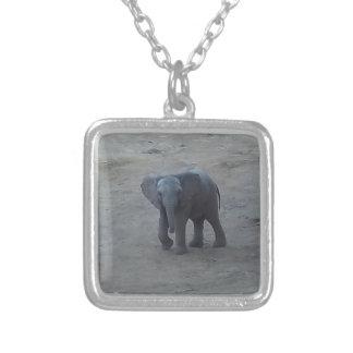 Collar del elefante del bebé - por la sabana del