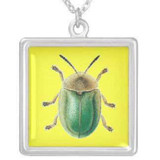 Collar del escarabajo de la tortuga