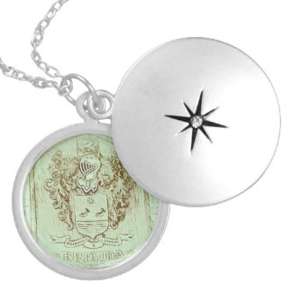Collar del escudo de la familia de Brigida (vintag