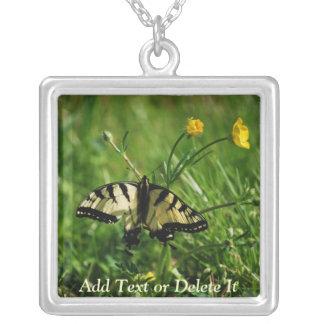 Collar del este de Swallowtail del tigre