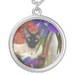 Collar del gato siamés con los iris