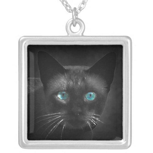 Collar del gato siamés de los ojos azules
