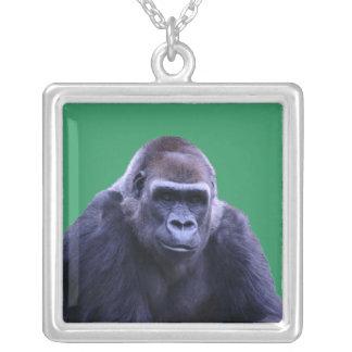 collar del gorila