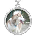 Collar del husky siberiano
