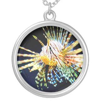 Collar del Lionfish