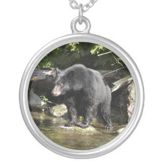 Collar del oso negro