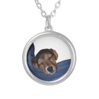 Collar del perrito del beagle el dormir