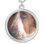 Collar del perro de Basset Hound