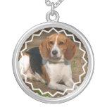 Collar del perro del beagle