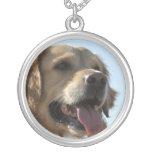 Collar del perro del golden retriever