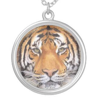 Collar del punto del tigre