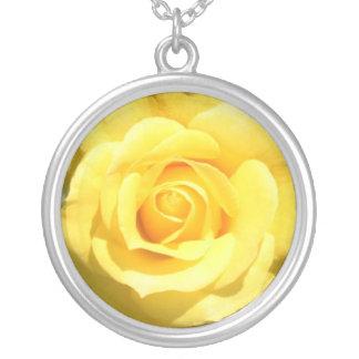Collar del rosa amarillo