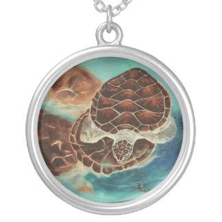 Collar del tiempo de la tortuga
