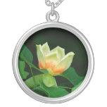 Collar del tulipán del árbol de álamo