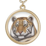 Collar elegante del tigre de Bengala