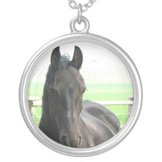 Collar frisio negro del caballo