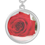 Collar largo del rosa rojo del tronco