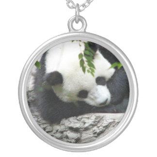 Collar lindo de la panda