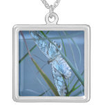 Collar macro precioso de la mariposa de la plata e
