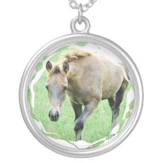 Collar melado del caballo