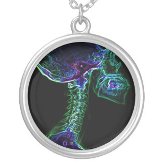 Collar multicolor de la C-espina dorsal