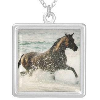 Collar personalizado de la foto del caballo