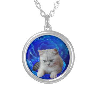 Collar plateado plata del gato pequeño