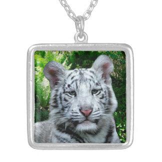 Collar plateado plata media del tigre