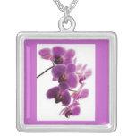 Collar púrpura de la orquídea