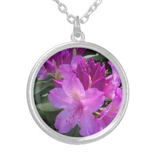 Collar redondo del medallón de la azalea rosada