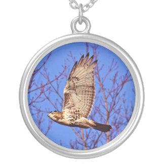 Collar Rojo-Atado del halcón