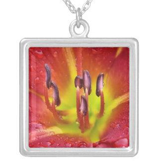 Collar rojo tropical de la flor del lirio