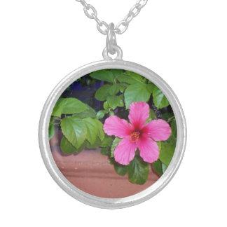 Collar rosado de la foto de la flor