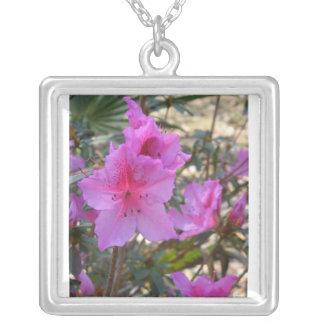 Collar rosado de las azaleas