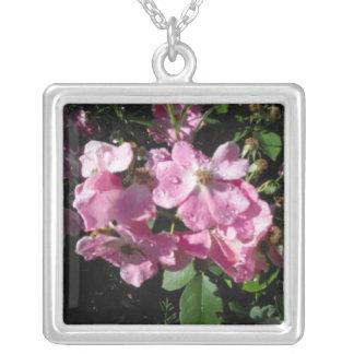 Collar rosado de las gotas de agua de los rosas w
