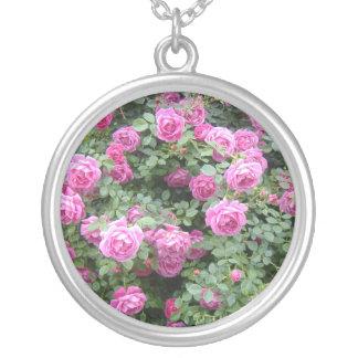 Collar rosado de Rosebush