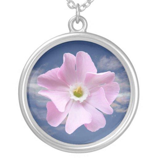 Collar rosado del ~ de la flor de la coronaria