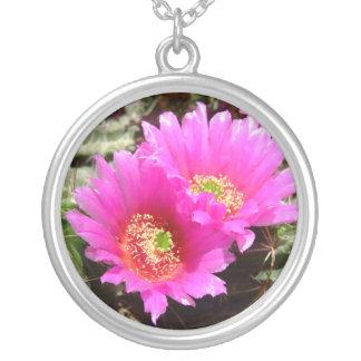 Collar rosado del flor del cactus