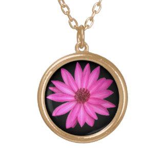 Collar rosado púrpura violeta del recuerdo de la f