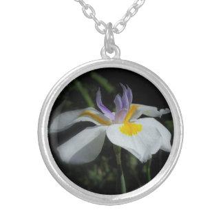 Collar salvaje de la plata esterlina del iris