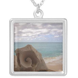 Collar tropical del Seashell del paraíso
